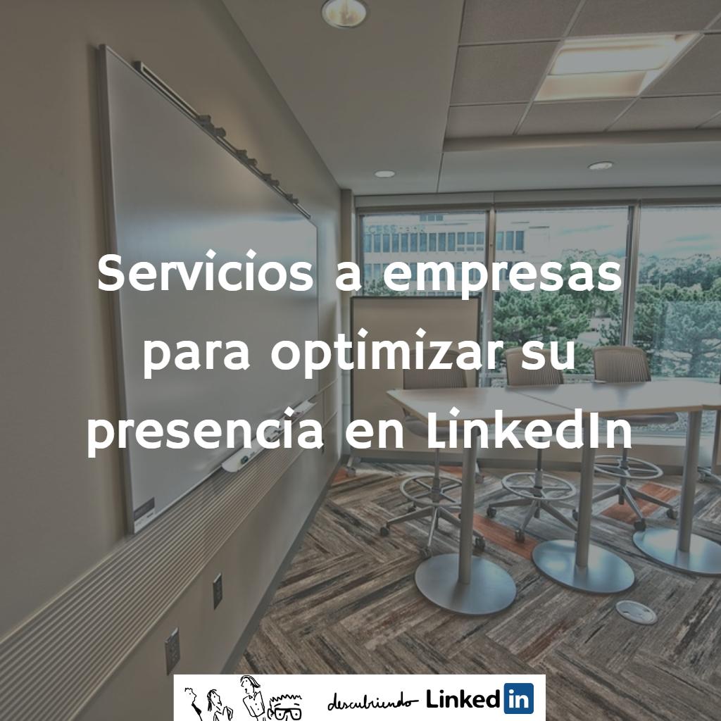 servicios-a-empresas-para-optimizar-su-presencia-en-linkedin-_-elisabet-canas-_-descubriendo-linkedin